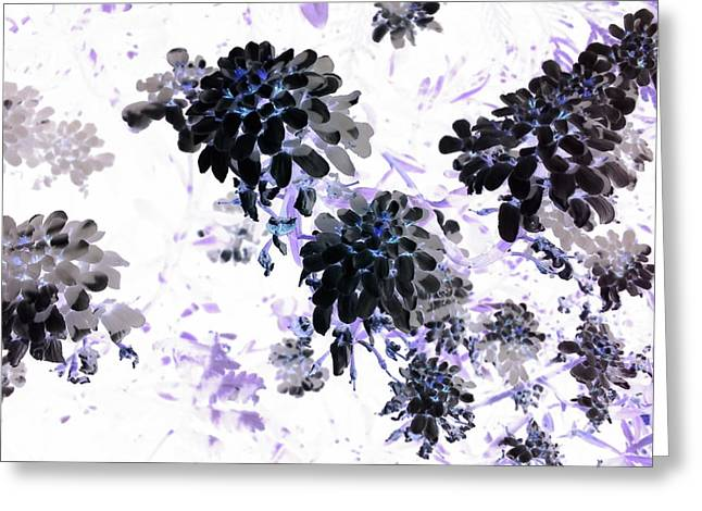 Black Blooms I Greeting Card