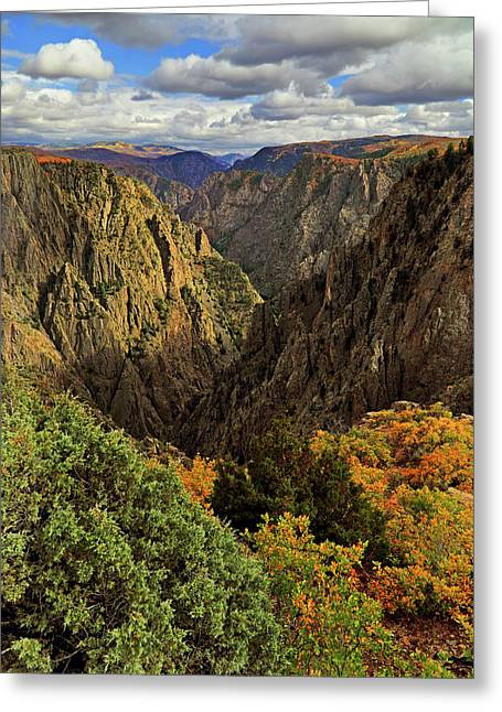 Black Canyon Of The Gunnison - Colorful Colorado - Landscape Greeting Card by Jason Politte