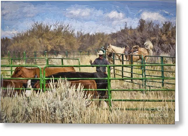 Black Canyon Round Up Greeting Card by Janice Rae Pariza