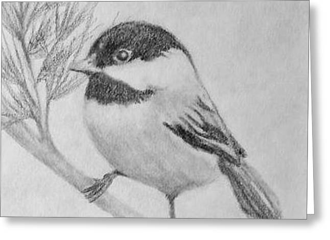 Black Capped Chickadee Left Facing Greeting Card