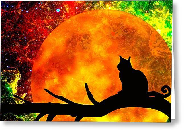 Black Cat Harvest Moon Greeting Card