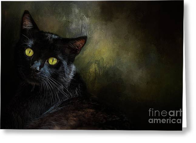 Black Cat Portrait Greeting Card