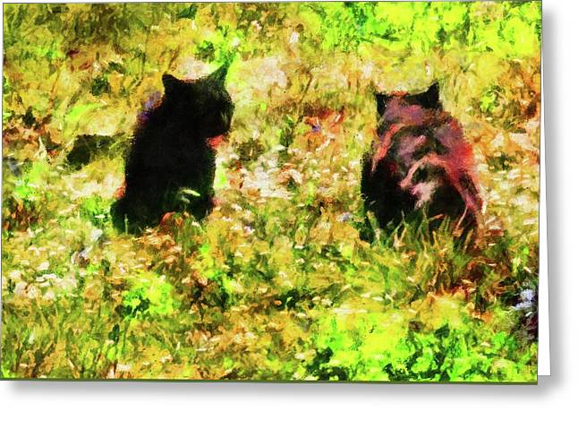 Black Cat Stand Off Greeting Card by Dorothy Berry-Lound