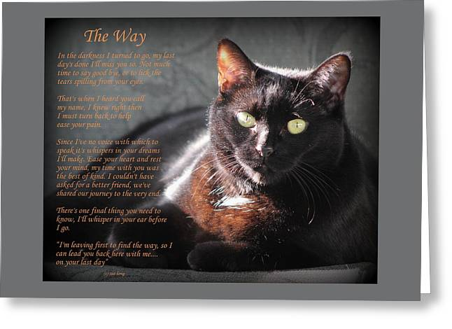 Black Cat The Way Greeting Card