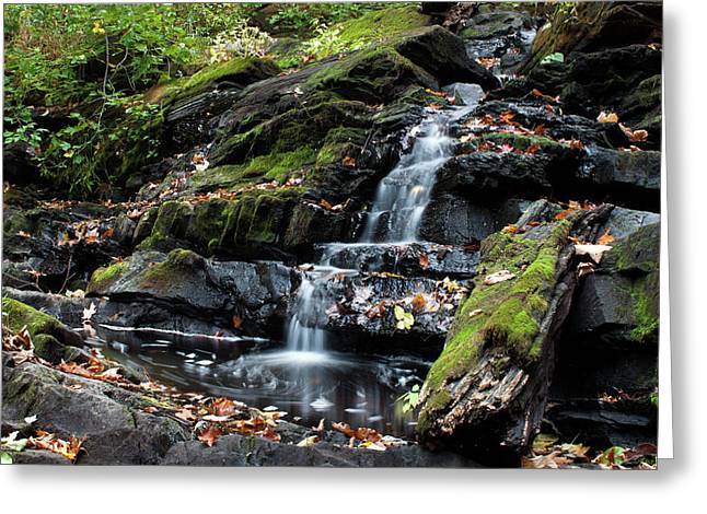 Black Creek Falls In Autumn, 2016 Greeting Card by Jeff Severson