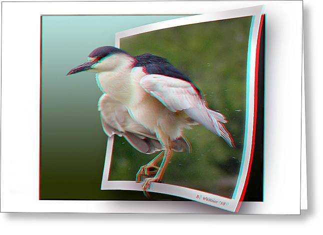 Black Crowned Night Heron - Use Red-cyan 3d Glasses Greeting Card by Brian Wallace