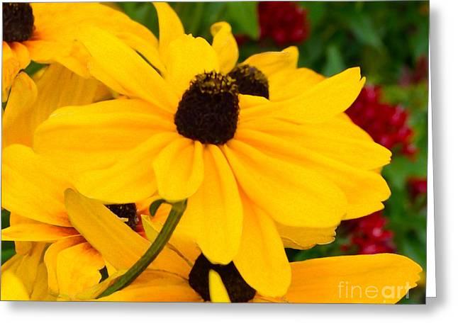 Greeting Card featuring the digital art Black-eyed Susan Floral by Mas Art Studio