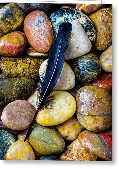 Black Feather Greeting Card by Garry Gay