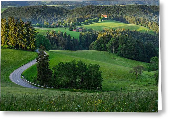 Black Forest Morning Greeting Card