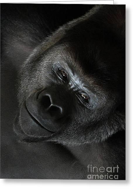 Black Gorilla Smile Greeting Card