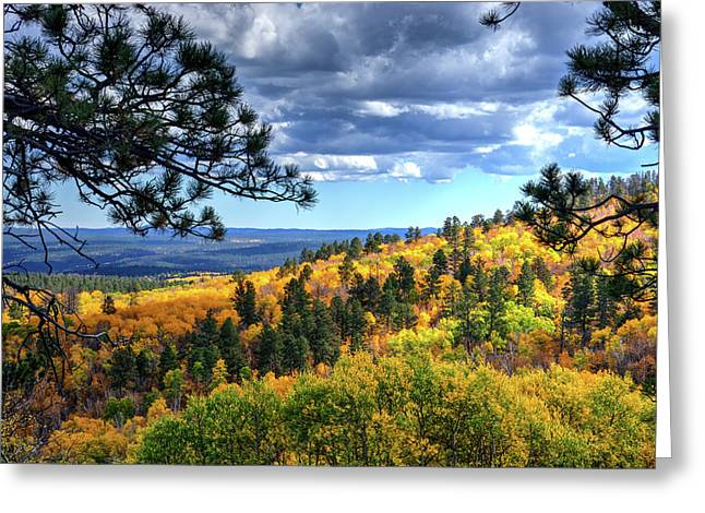 Black Hills Autumn Greeting Card