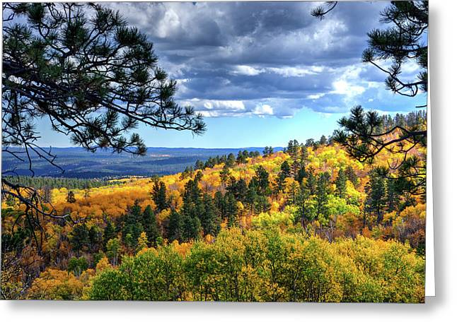Black Hills Autumn Greeting Card