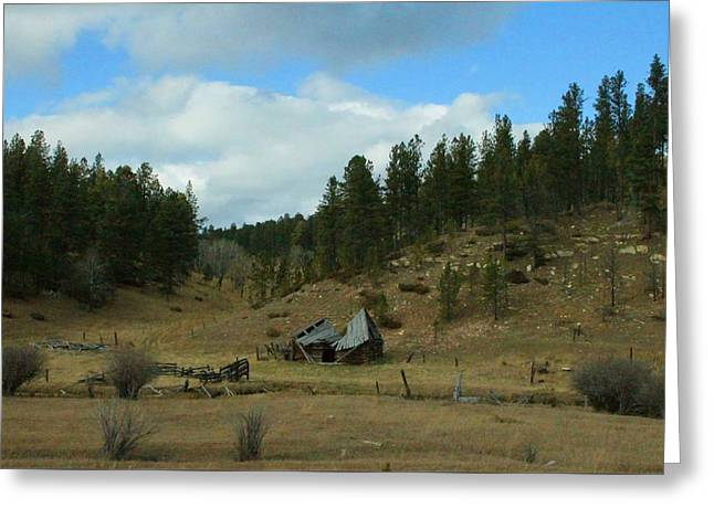 Black Hills Broken Down Cabin Greeting Card by Christopher Kirby