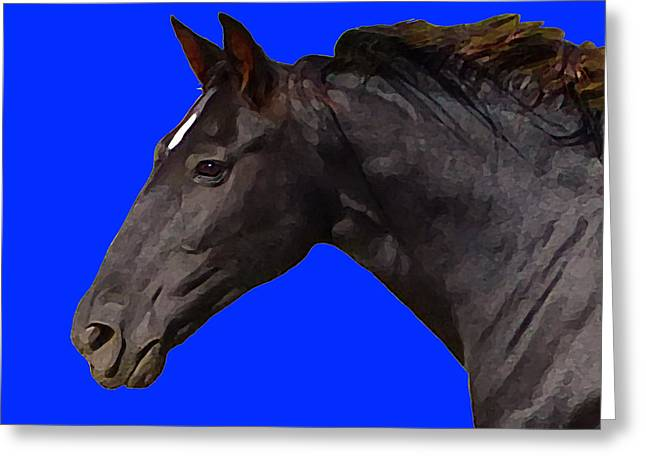 Black Horse Spirit Blue Greeting Card
