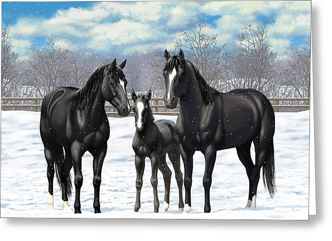 Black Horses In Winter Pasture Greeting Card