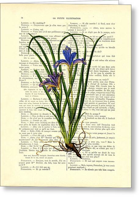 Black Iris Antique Illustration On Dictionary Page Greeting Card