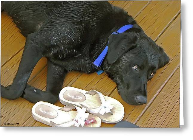 Black Lab Resting Greeting Card