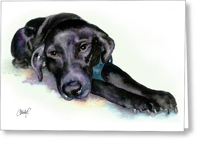 Black Lab Stretching Out Greeting Card