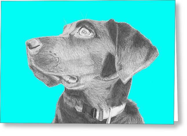 Black Labrador Retriever In Blue Headshot Greeting Card