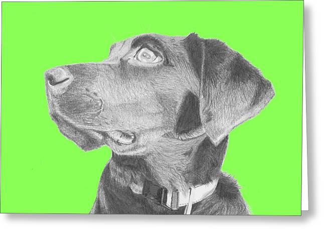 Black Labrador Retriever In Green Headshot Greeting Card by David Smith