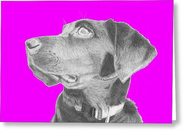 Black Labrador Retriever In Pink Headshot Greeting Card by David Smith