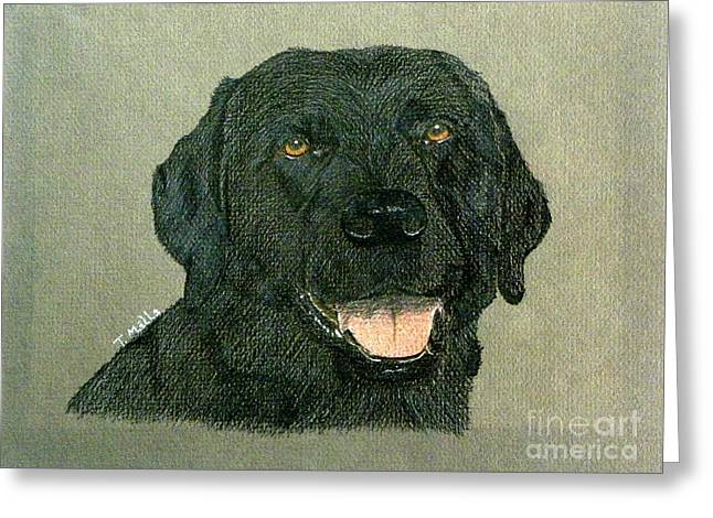 Greeting Card featuring the drawing Black Labrador Retriever by Terri Mills