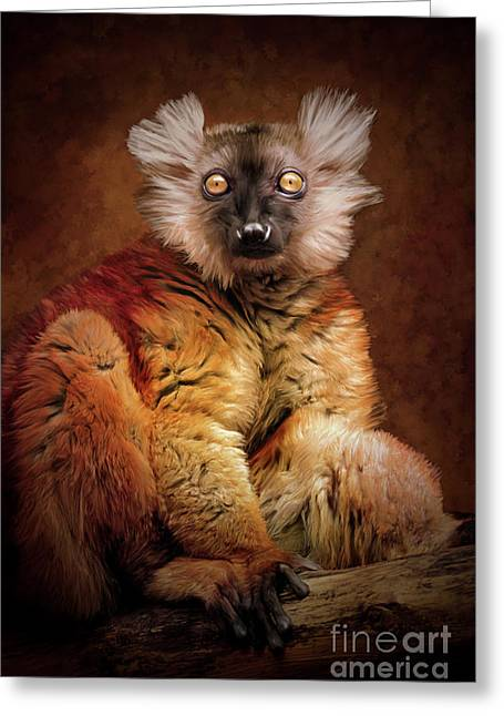 Black Lemur Greeting Card