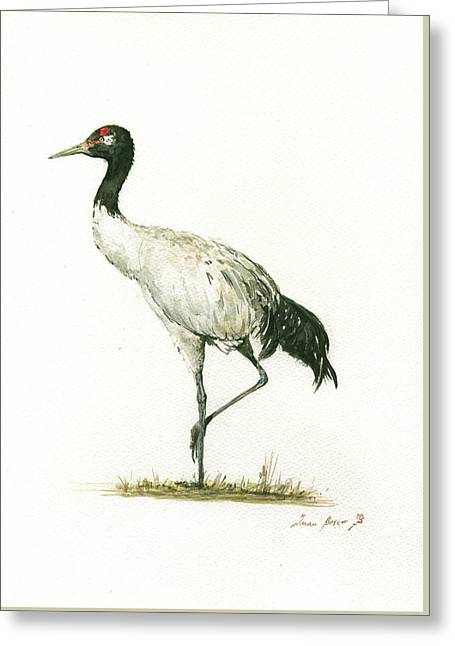 Black Necked Crane Greeting Card