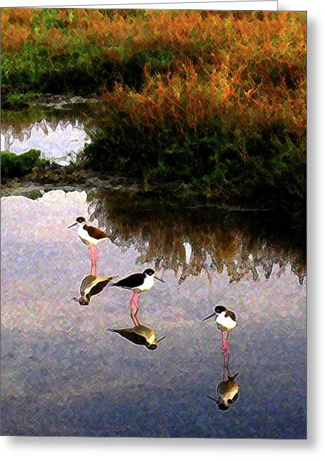 Greeting Card featuring the digital art Black-necked Stilts by Timothy Bulone