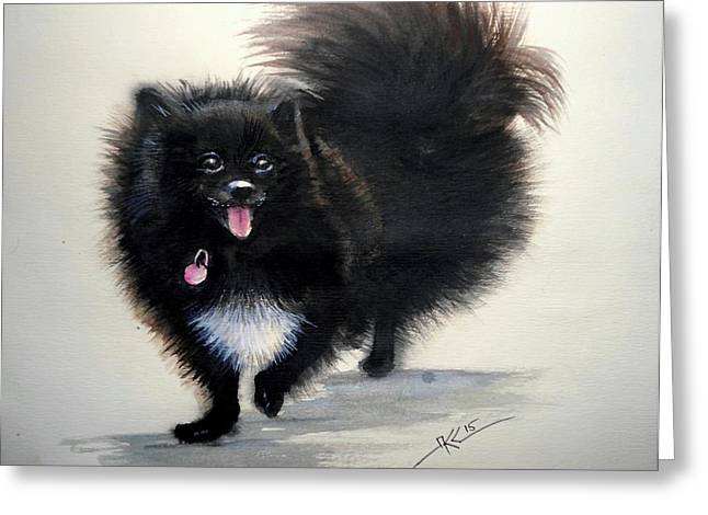 Black Pomeranian Dog 3 Greeting Card