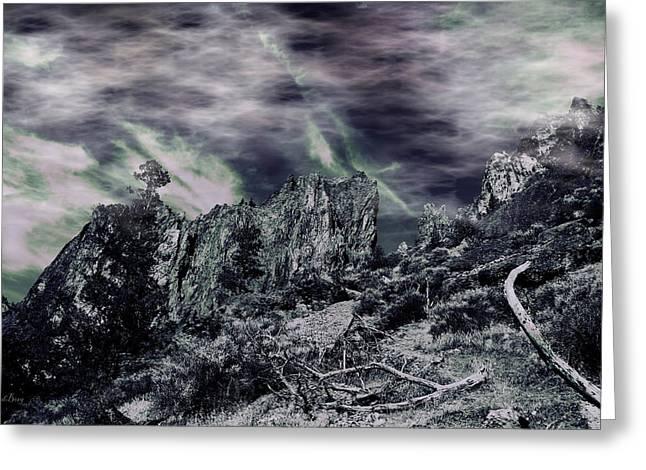 Black Rock Greeting Card by Douglas Berg