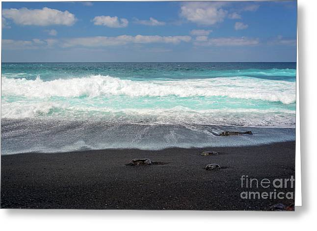 Black Sand Beach Greeting Card by Delphimages Photo Creations