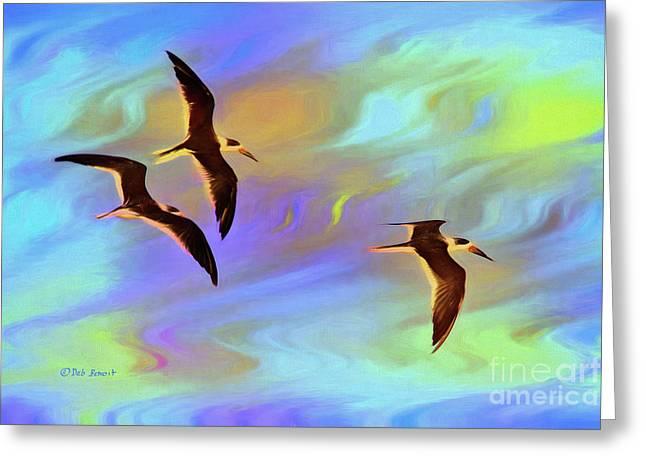 Black Skimmers Three Greeting Card by Deborah Benoit