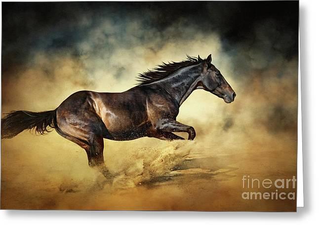 Black Stallion Horse Galloping Like A Devil Greeting Card