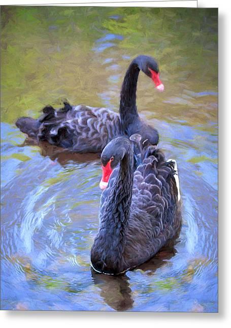 Black Swans Greeting Card