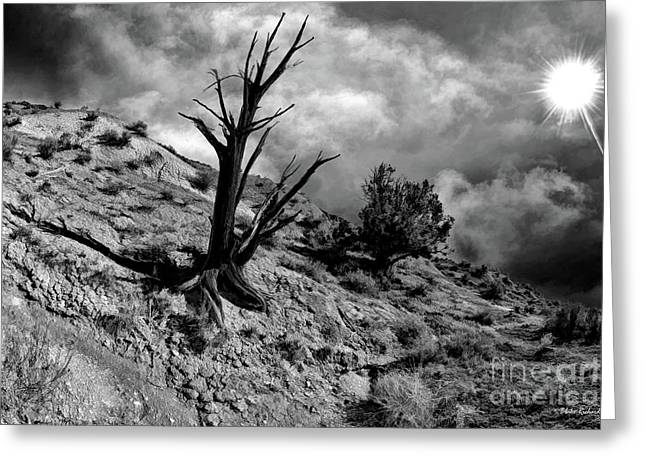 Black Tree Pahreah Ghost Town Greeting Card by Blake Richards