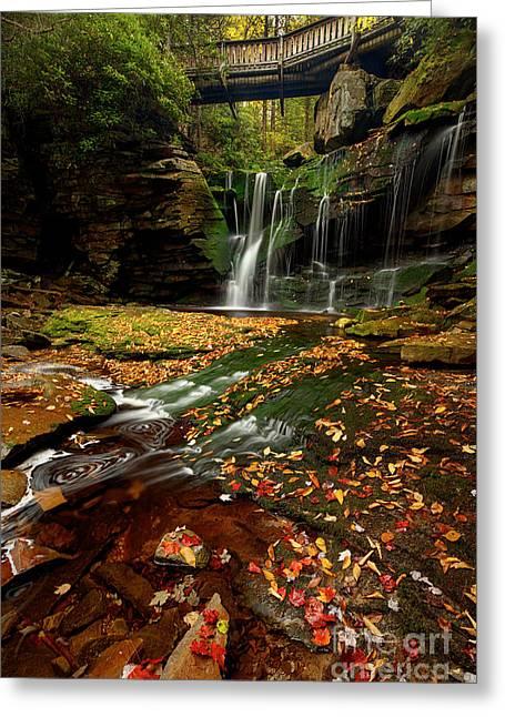 Black Waterfalls  2 Greeting Card