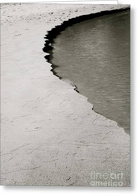 Black & White Shoreline Greeting Card