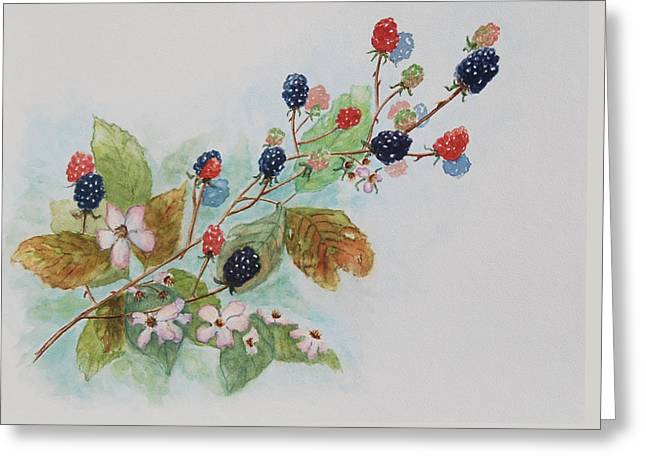 Blackberry Composition Greeting Card by Geraldine Leahy