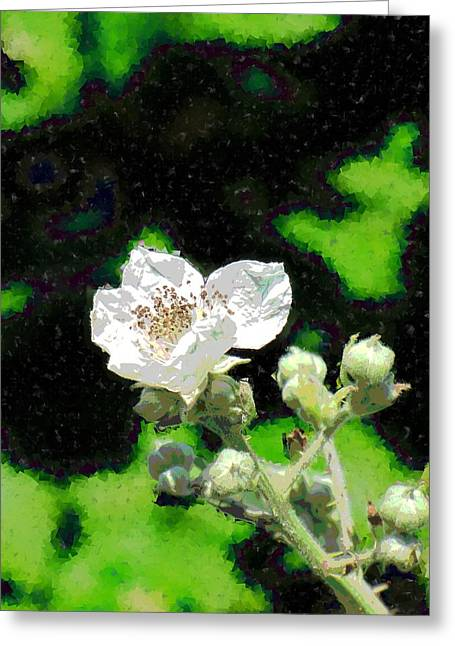 Blackberry Of My Eye Greeting Card