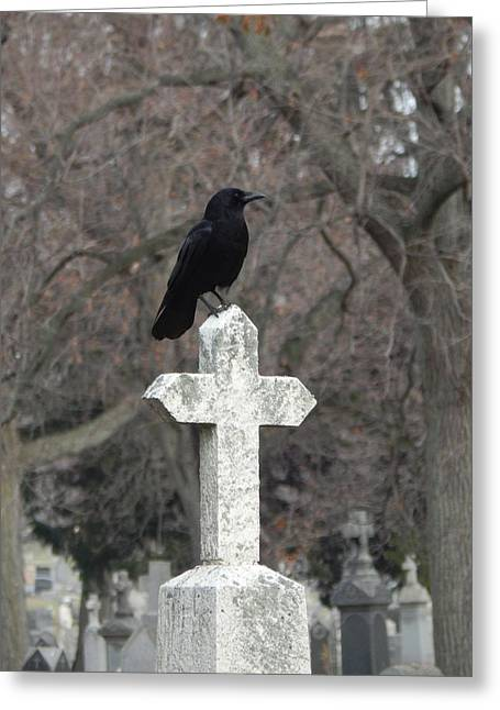 Blackbird On A Old White Cross Greeting Card