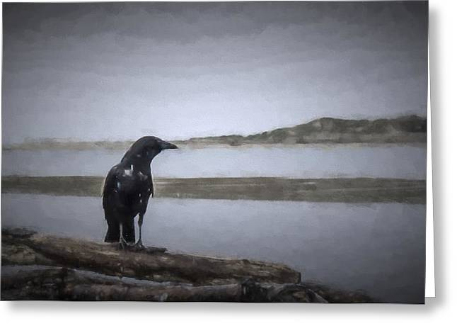Blackbird Surveys The Bay Greeting Card