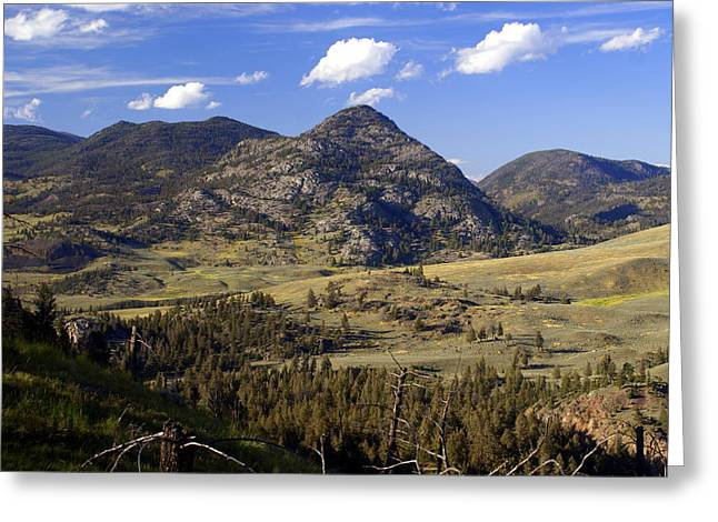Blacktail Road Landscape 2 Greeting Card
