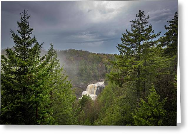 Blackwater Falls In Spring Greeting Card by Michael Donahue