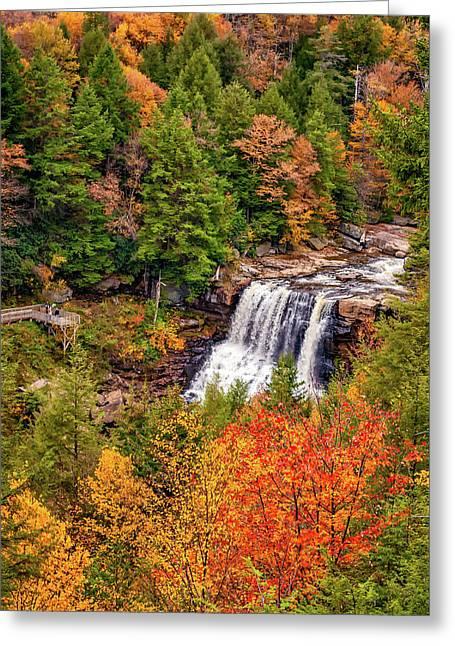 Blackwater Falls Wv - Paint Greeting Card by Steve Harrington