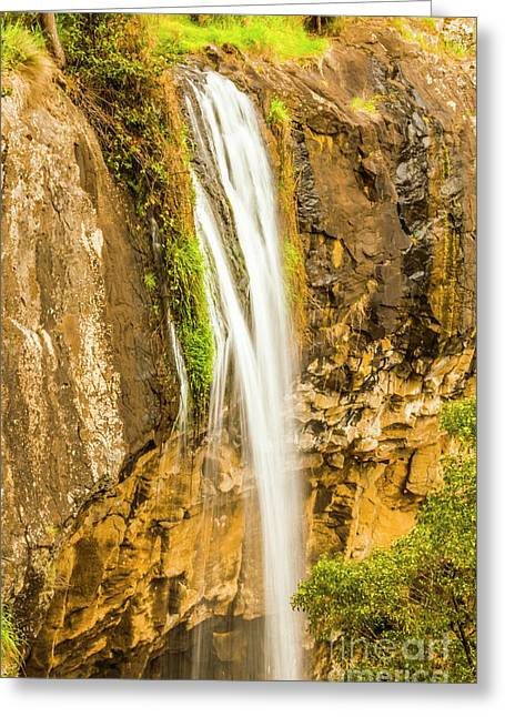 Blackwood Forest Waterfall Greeting Card