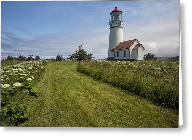 Blanco Lighthouse Greeting Card by Jon Glaser