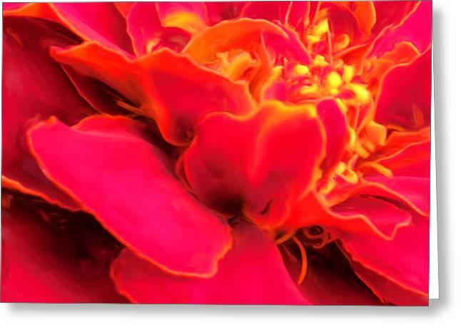 Blazing Pink Marigold Greeting Card