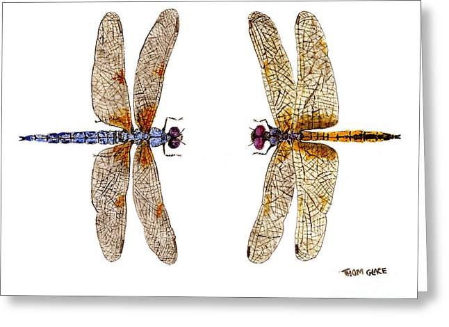 Greeting Card featuring the painting Bleached Skimmer And Hyacinth Glider by Thom Glace