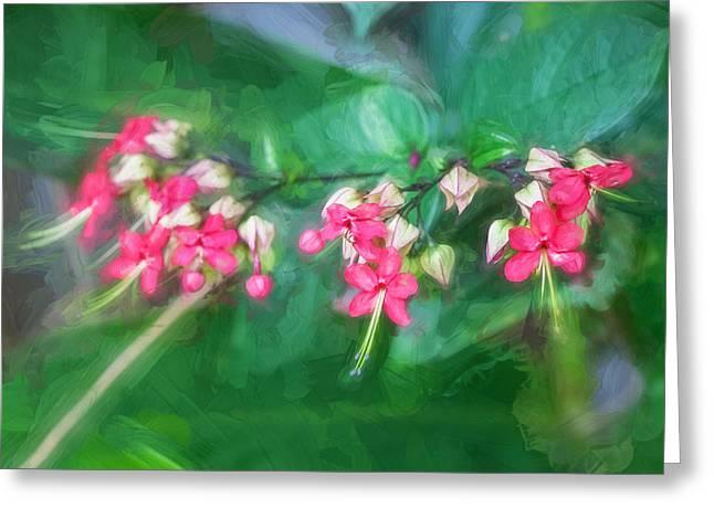 Bleeding Heart Flowers Clerodendrum Painted 5 Greeting Card
